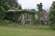 Letchworth Village Revisit 7 by rchrdcnnnghm, via Flickr Abandoned Asylums, Abandoned Buildings, Abandoned Places, Brick And Mortar, Physically And Mentally, Acre, United States, Mansions, Rockland County