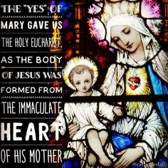 """The """"yes"""" of Mary gave us the Holy Eucharist as the body of Jesus was formed from the Immaculate Heart of His Mother from whose flesh Jesus took the flesh He gives us in the Blessed Sacrament.  Fr. Martin Lucia  #catholic #peace #eucharist #believe #silence #truth #jesus #jesuschrist #holyspirit #prayer #mass #saints #communion #virginmary #avemaria #hailmary #christian #church #savior #God #love #beauty #faith #trust #humility #santamissa #가톨릭 #katolik #advent by catholicdaily"""