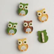 Harvest Owls Felt Clips, Set of 6  WorldMarket.com