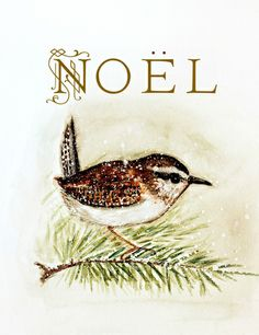 noel wren - watercolor Stretched Canvas - free shipping through Sunday!     (oct 27)