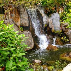 #Larvotto Franc,Monaco city #Franc#Monte_Carlo#Monaco#nature#waterfall#green#travel #like#Oman_traveler#سياحة #تصويري #قطر #طبيعة #موناكو#مونتاكارلو#فرنسا#العرب_المسافرون #الخليج #شلال#طبيعي #رومنسي# by qatar_soul2022 from #Montecarlo #Monaco