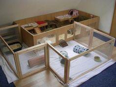Guinea pig living space