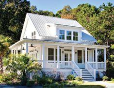 White or light gray body/white trim/gray roof