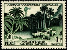 Mauritanie French West Africa 1955 engraved by Gandon