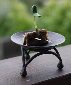 Esta idea es genial! Permite reutilizar las bolsas de té que utilicemos, y lo…
