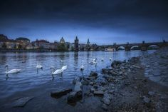 ...praha XL... - begining of the night in prague...  contact for prints: roblfc1892@gmail.com  All images are © copyright roblfc1892 - roberto pavic. You may NOT use, replicate, manipulate, or modify this image.  roblfc1892 - roberto pavic © All Rights Reserved