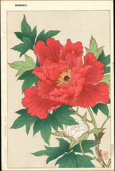 japanese woodblock print red flower - Google Search