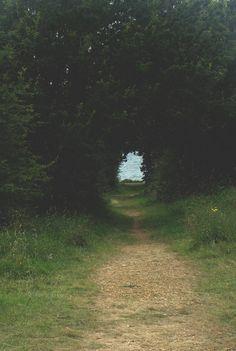 path.