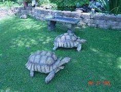 sulcata tortoise box - Yahoo Search Results