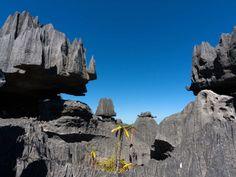 Tsingy de Bernaraha, no Parque Nacional em Madagascar  Leia mais em: 25 das paisagens mais surreais da Terra - Metamorfose Digital http://www.mdig.com.br/index.php?itemid=29483#ixzz3dceuVMhY