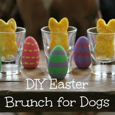 Easter Brunch isn't just for humans anymore. Now dogs can join in the celebration too with these easy two ingredient Easter Brunch Egg Scrambles for Dogs!