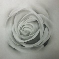 flower drawings in black and white pencil - Google Search