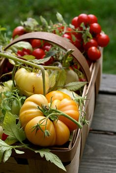I love heirloom tomatoes.