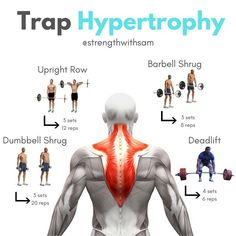 Best hypertrophy exercises for traps muscle. by fitness Traps Workout, Gym Workout Chart, Gym Workout Tips, Cardio Gym, Workout Videos, Sport Fitness, Fitness Tips, Fitness Workouts, Health Fitness