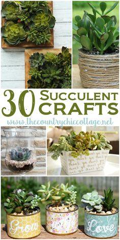 30 Sensational Succulent Crafts - * THE COUNTRY CHIC COTTAGE (DIY, Home Decor, Crafts, Farmhouse)
