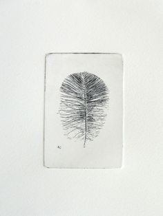 etching of a feather