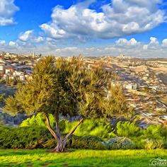 """City of David, Jerusalem"" -- Instagram Sharon Gabay"
