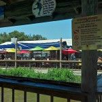 859 Pompano Ave New Smyrna Beach Uniquely Floridian JB's Fishcamp is located a few miles south of Daytona Beach in New Smyrna Beach. It may be a little cruise away from the Worl… Kayak Rentals, Fish Camp, Daytona Beach, Outdoor Dining, Kayaking, Pergola, Florida, Boat, Camping