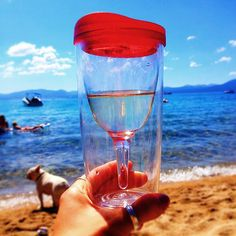 "Stacey: ""I Vino on the beach at beautiful Lake Tahoe. There's nothing better than a travel cup for my vino when we bring the dogs up to the lake with us, because they manage to get sand everywhere."" #winesippycup #Vino2Go @Matty Chuah Product Farm store.theproductfarm.com"