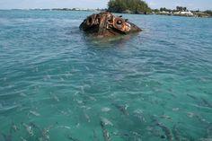 Bermuda Ship Wreck