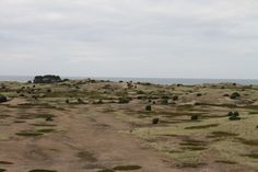 Anholt's desert