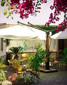 Holidays Fico d'India (The Prickly Pear) | Furore | Amalfi Coast | Italy. THIS IS WHERE WE ARE STAYING!!!!!!!!!!!!!!!!!!!!!!!!!!!!!!!!