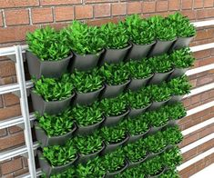 WallPot by Greenamic (A Flexible Green Wall System) Vertical vegetable gardens, Vertical garden, Ver Container Plants, Container Gardening, Patio Tomatoes, Vertikal Garden, Vertical Vegetable Gardens, Vertical Garden Design, Raised Garden Beds, Raised Beds, Garden Solutions