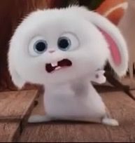 Make your own stickers for WhatsApp and iMessage Cute Bunny Cartoon, Cute Cartoon Pictures, Cartoon Pics, Cute Cartoon Characters, Favorite Cartoon Character, Snowball Rabbit, Foto Cartoon, Hd Cute Wallpapers, Walt Disney Pixar