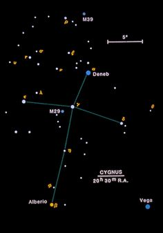 Cygnus - Brightest Star: Deneb