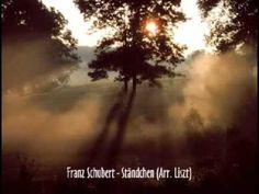 Franz Schubert - Ständchen (Arr. Liszt)