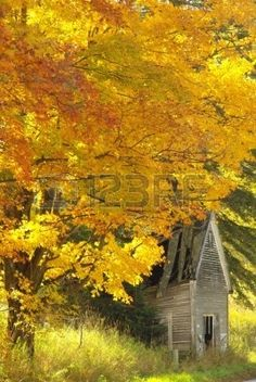 Old cabin bordered by Vermont fall foliage Stock Photo