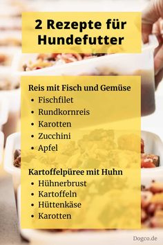 Hundefutter Rezepte zum selber kochen Pumpkin Recipes For Dogs, Dog Food Recipes, Maila, Dog Rooms, Animals And Pets, Cute Animals, Dog Biscuits, Homemade Dog Food, Happy Dogs