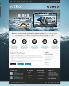 Ice Buddypress Wordpress Theme, Ice Cold Wordpress theme  Blue Whtie and Black