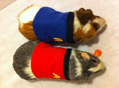 Star Trek Guinea Pig Costume by GuineaPigGeekery on Etsy