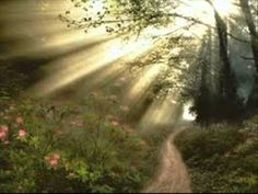 Exercício do perdão e autoperdão | Libertando-se de culpas, mágoas e ressentimentos | Louise Hay - YouTube