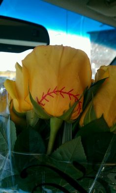 Softball roses! Yellow roses and a red sharpie.