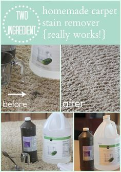 Homemade+Carpet+Cleaner.  Mix equal parts vinegar and hydrogen peroxide, spray or blot on stain, wait 2-3 min then wipe with damp cloth.