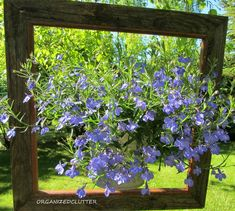 Showcase a potted plant. 25 Awesome Things You Didn't Know You Could Do With Old Picture Frames