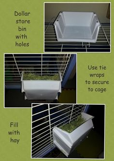 Guinea pig cages. Make sure that your lovely guinea pigs have got the finest things in life. A large guinea pig cage, or run, not only tends to make them more entertaining to observe, but guarantees they get the physical activity they need to be able to remain healthy and fit.