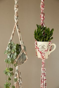 Set of 2 plant hangers - Macrame plant holders made from cotton tshirt yarn Go to for a great selection of T-Shirt Yarn Macrame Wall Hanging Diy, Macrame Plant Holder, Macrame Plant Hangers, Plant Holders, Indoor Plant Hangers, Hanging Planters, Pots, Macrame Patterns, Chunky Yarn