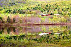 Spring Reflections - Berlin Pond - - Berlin, Vermont