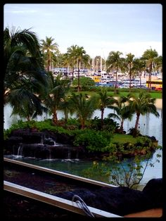 A lagoon at the Hilton Hawaiian Village