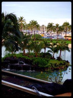 A lagoon at the Hilton Hawaiian Village