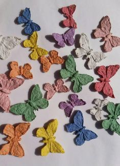 7 Sustainable Alternatives to Confetti at Your Wedding   Green Wedding Shoes Can We Get Married, Biodegradable Confetti, Wedding Venues, Wedding Day, Seed Bombs, Wildflower Seeds, Green Wedding Shoes, Celebrity Weddings, Dried Flowers