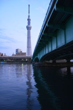 SkyTree during the day