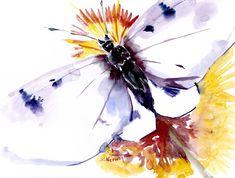 BUtterfly art, Original Watercolor painting by ORIGINALONLY on Etsy Butterfly Art, Butterflies, Watercolor Paper, Watercolor Paintings, Pink Cockatoo, Eco Friendly Paper, Love Birds, Blue Bird, Photo Art