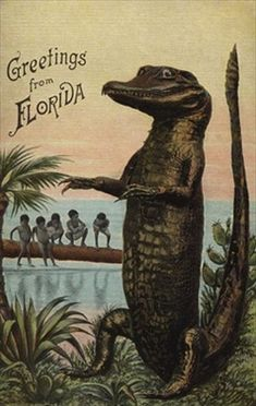New travel poster florida fun 65 Ideas Old Florida, Vintage Florida, Florida Travel, New Travel, Sarasota Florida, Kissimmee Florida, Clearwater Florida, Beach Travel, Vintage Travel Posters