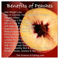 Peaches have health benefits from antioxidants like, anti-aging properties, increased immunity and help removing toxins from the body. Peaches also are rich in fiber, as well as vitamins A, B, C, and E.