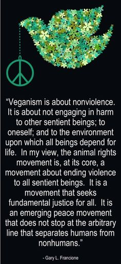 Veganism is about non-violence and justice that doesn't stop at the arbitrary line that separates humans from nonhumans...