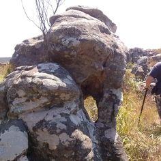 Stone Elephant Kaapschehoop South Africa